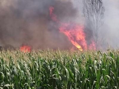 חום יולי: שריפה גדולה בכנרת