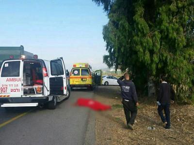 הרוג בתאונת דרכים קטלנית בכביש 73