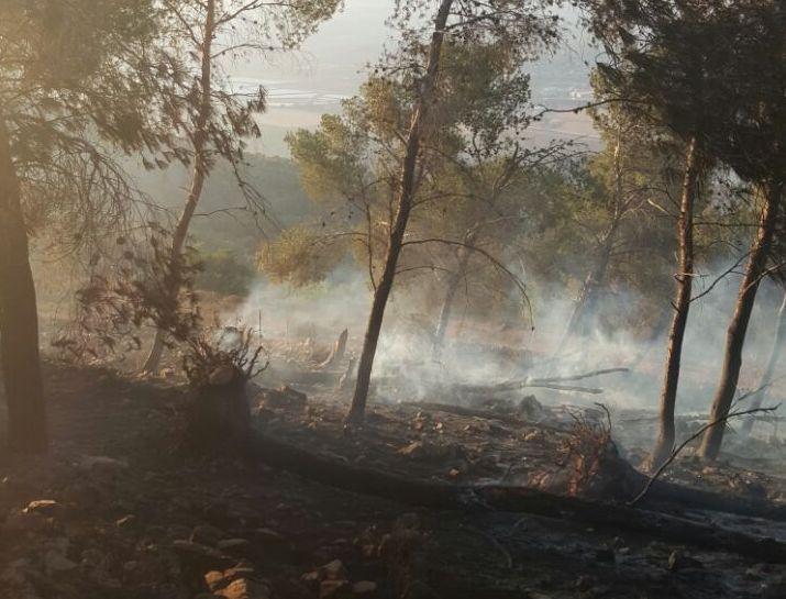 החום כבד השריפות משתוללות