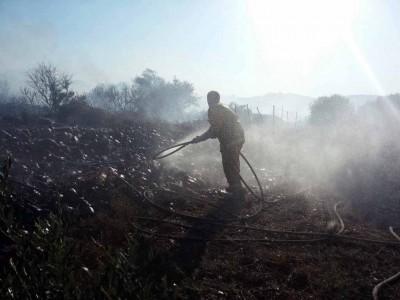 השריפה בהושעיה: 6 ציוותי כיבוי נוספים הוזעקו לשטח