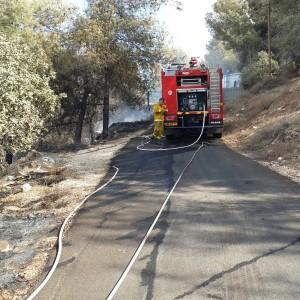 שרפה ביער הר תבור