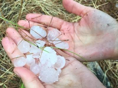 """""""גשם גשם בא"""": צפו בחילוץ התלמידים בנחל יצפור שבגלבוע"""