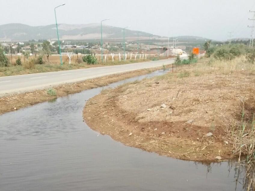 גדעונה: ריחות רעים ויתושים כתוצאה מהיקוות מים