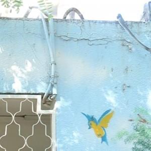 הקירות החיצוניים סדוקים ומתקלפים