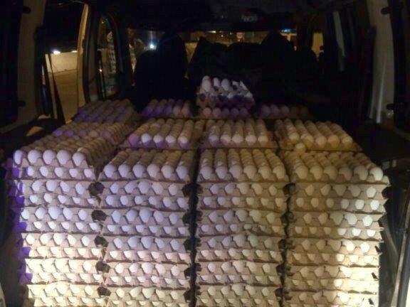 שיטת השקשוקה: מעל 10.000 ביצים מוברחות נתפסו בצומת מגידו