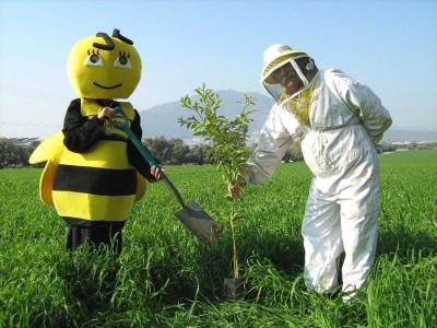 """ט""""ו בשבט – להצלת הדבורים"""