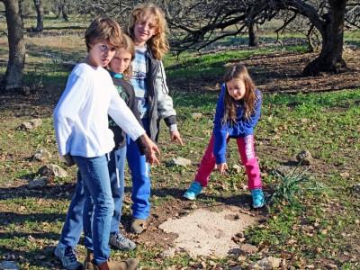 עמק יזרעאל: ילדים חשפו פסיפס עתיק