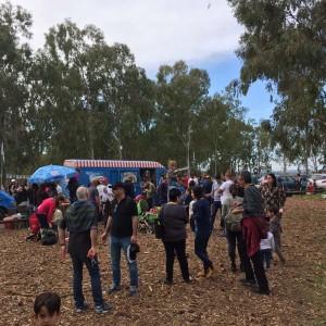 אלפים ביקרו ביער הכלניות במגידו