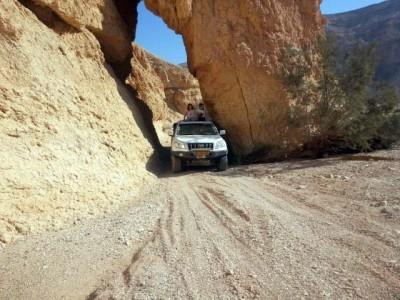 המלצה חמה: לחגוג את יום האישה במדבר רכובה על ג'יפ