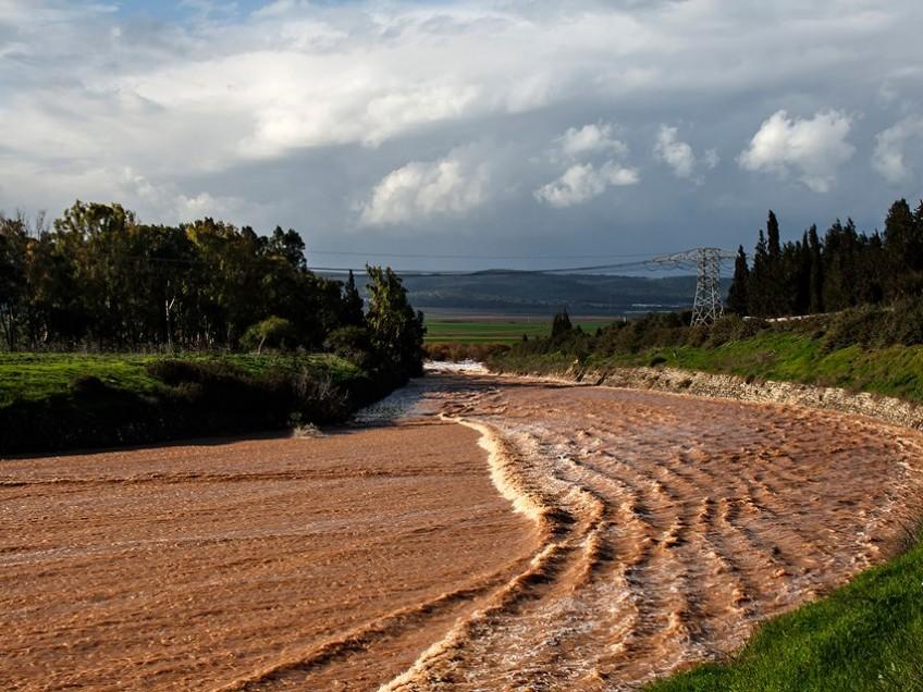 אגם ברוך: שבילים צפים בפארק החדש