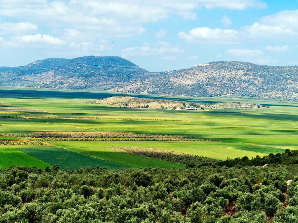 נוף הנשקף ממצפור נטופה אל בקעת נטופה-בכביש 65. צילום: חברת נתיבי ישראל