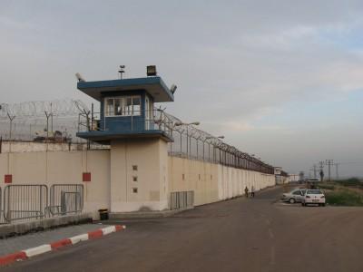 חזרה לשגרה: האסירים והסוהרים בכלא גלבוע ללא קורונה