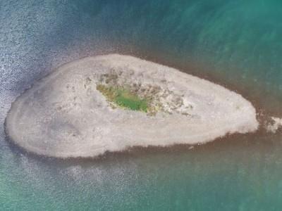 יבש: האי בכינרת הופיע שוב ומסמן את מפלס המים הנמוך