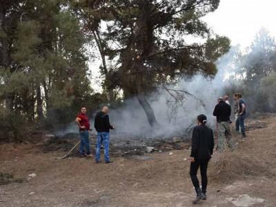 שני צעירים מאום אל פאחם חשודים בהצתה ביער הזורע