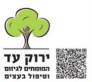 ירוק עד – המומחים לגיזום וטיפול בעצים.