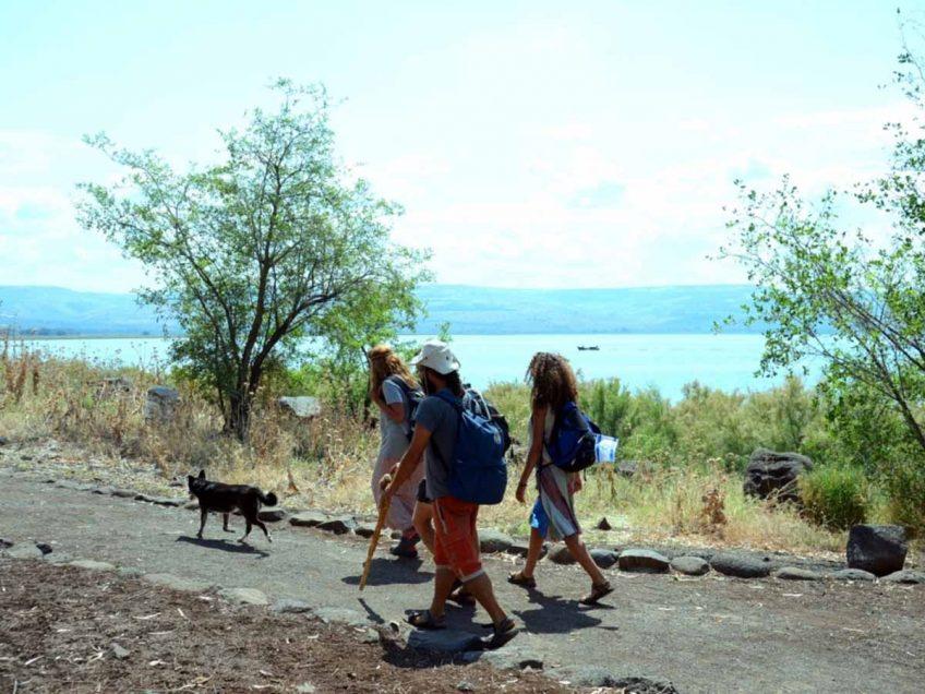 מטיילים בשביל סובב כינרת-גשר אריק לכפר לנום