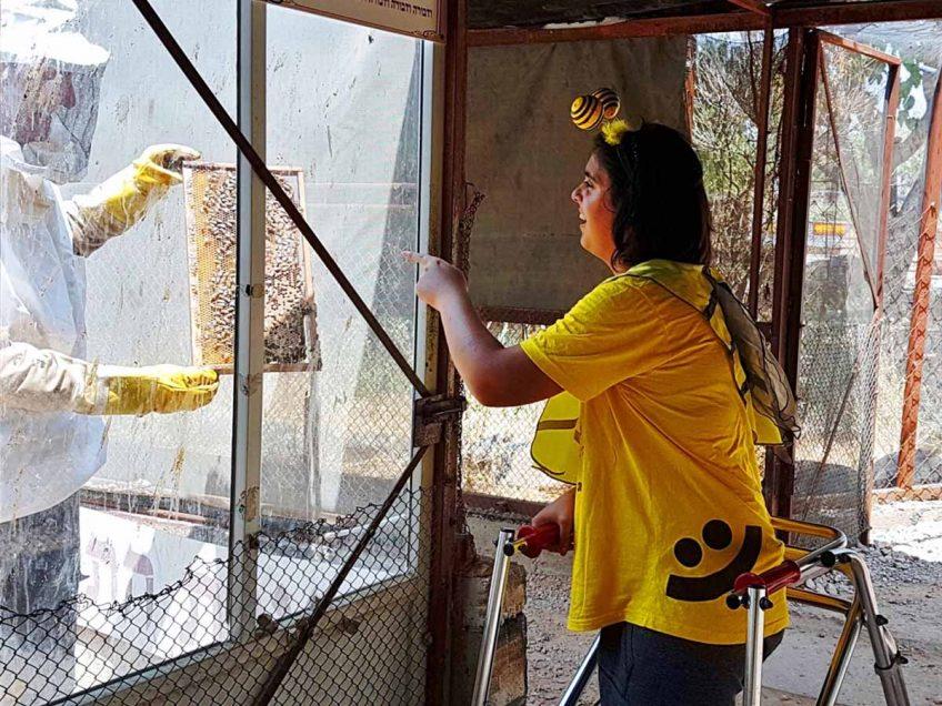 יהיה מתוק: פסטיבל הדבש ייחגג בדבורת התבור