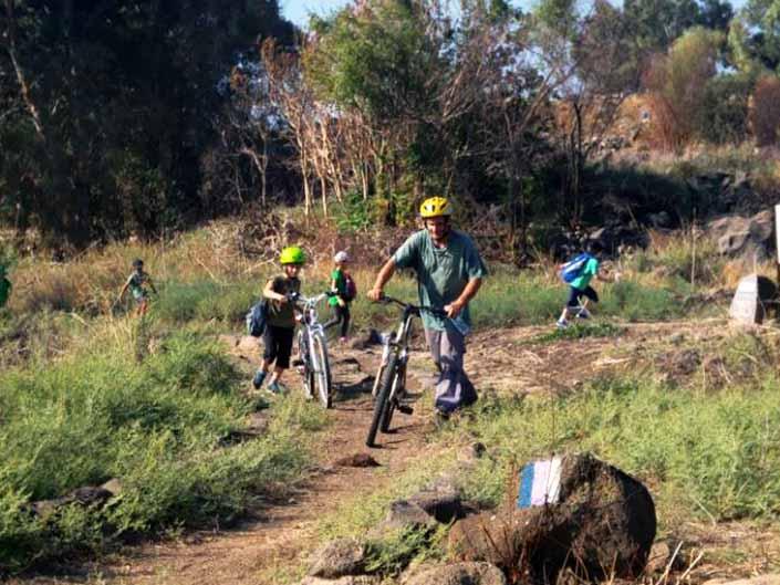 טיול אופניים בסובב כינרת צילום רשות הכינרת (2)