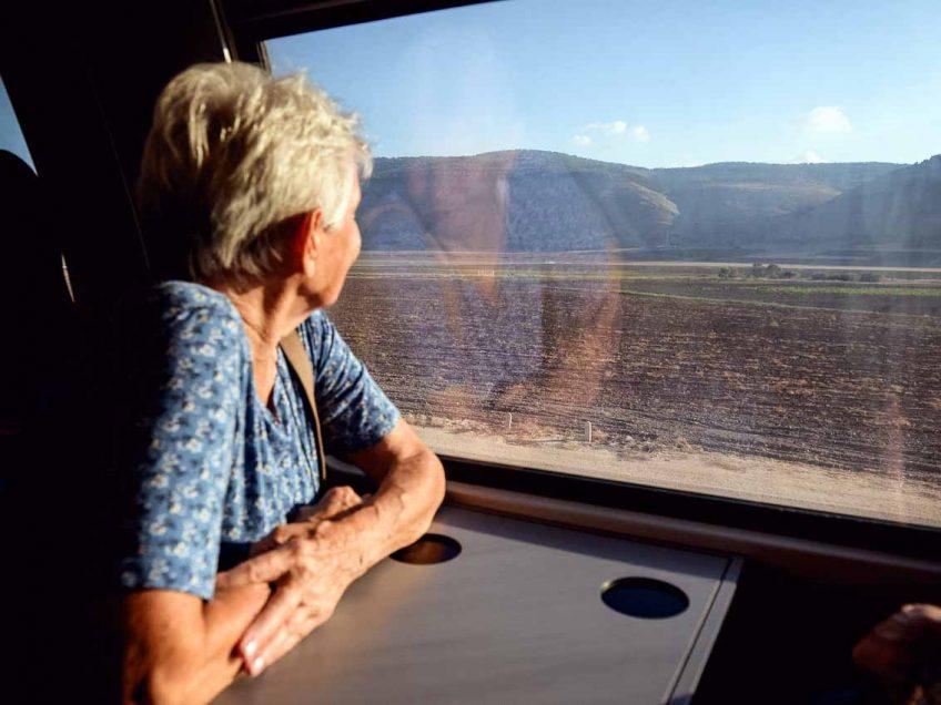 תןשבת האיזור נוסעת ברכבת וצופה בנוף