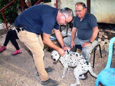כלבת בגלבוע ובעמקים: נתגלו עוד 2 מקרי כלבת.