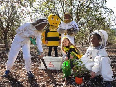 """ט""""ו בשבט: לנטוע ולחגוג עם הדבורים בחג האילנות"""