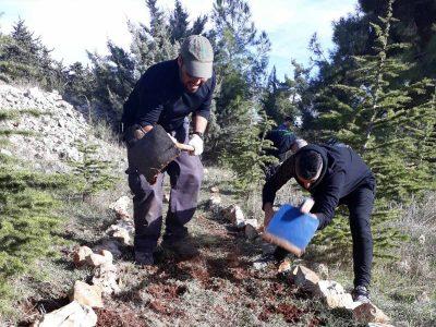 באלו הידיים: בני נוער מבית שאן התנדבו לפרוץ מקטע בשביל חדש ביער