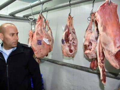 חצי טון בשר בשחיטה שחורה נתפס בקצביות בעמק