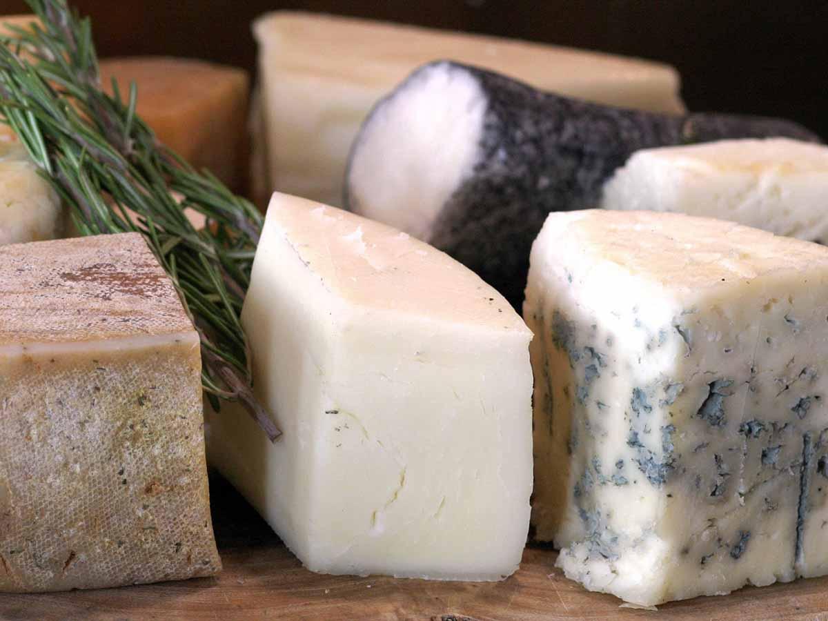 גבינות עיזים. צילום אבי ולדמן