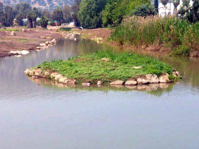 טיול משפחות לשבת: מסלול הליכה מיוחד בנחל קדש