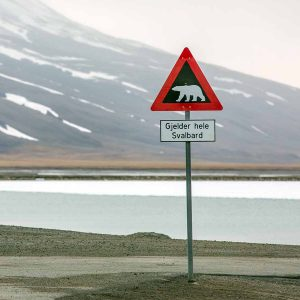 תמרור אזהרה על דובי הקוטב