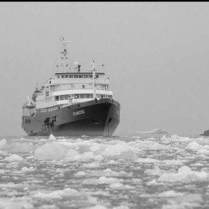 ספינת שיט שוברת קרח בים הצפוני