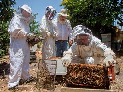 כבוד: תלמידים בויצו ניר העמק מייצגים את ישראל בתחרות לדבוראים צעירים בצרפת