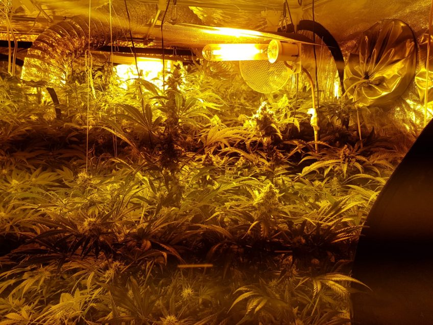עפולה: חדרו של פעוט כבן שנה הוסב למעבדת סמים