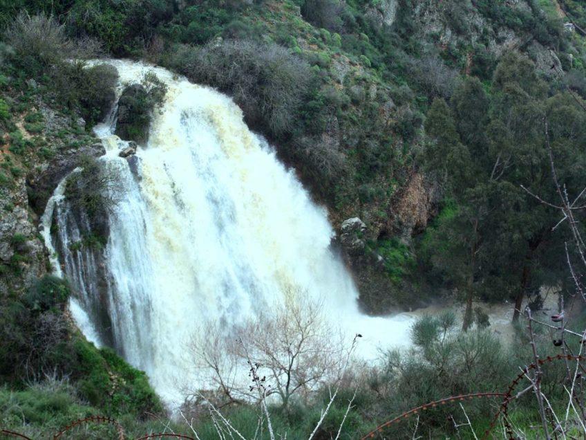 טיול לשבת: לעשות את מסלול המפלים ולחזות בזרימות המים המרהיבות בשמורת עיון