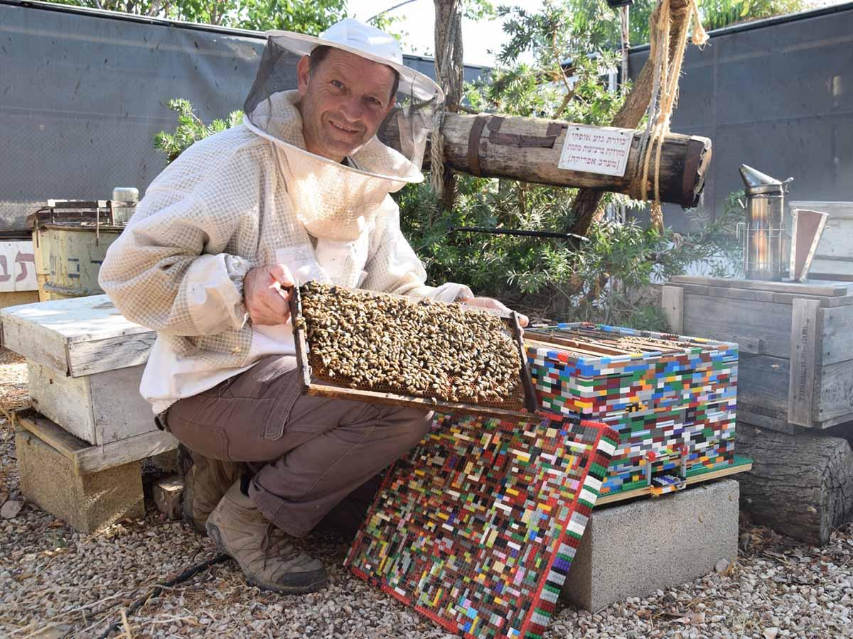 ן זאב עם כוורת הלגו ומשפחת הדבורים ששוכנה בכוורת המיוחדת