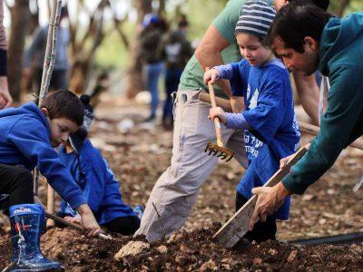 מרענן: 500 עצים ניטעו בכפר החורש