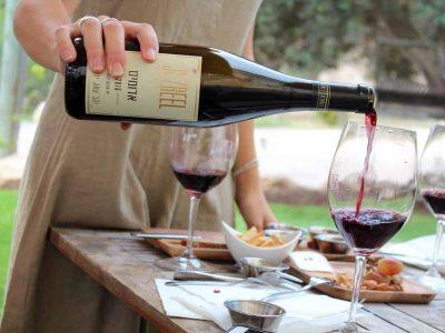 'בשביל היין'- תיירות יין בעמק יזרעאל