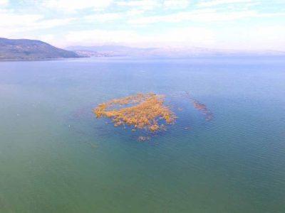 הכינרת: המפלס עולה והאי מול מעגן יורד