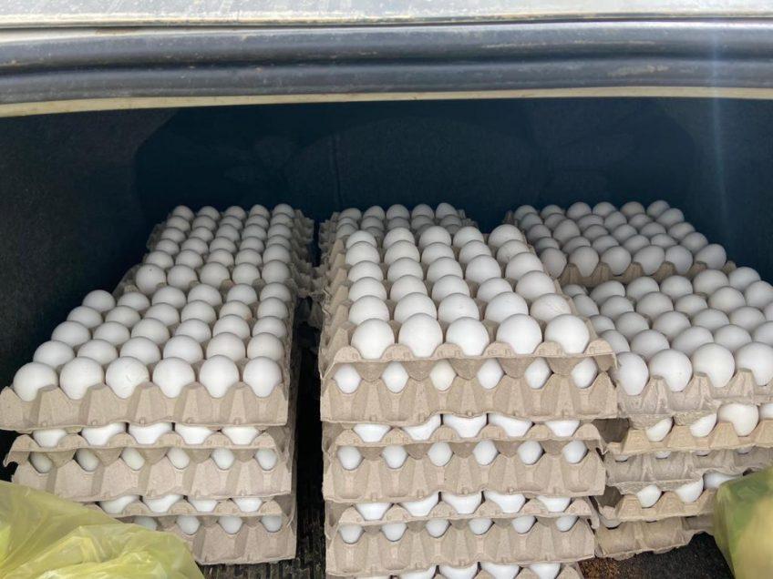בדרך לעפולה? 1050 ביצים ללא פיקוח נתפסו בצומת מגידו