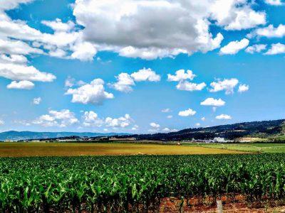 עמק יזרעאל: הוכרזו הזוכים בתחרות הצילומים 'מצלמים את העמק' בימי קורונה