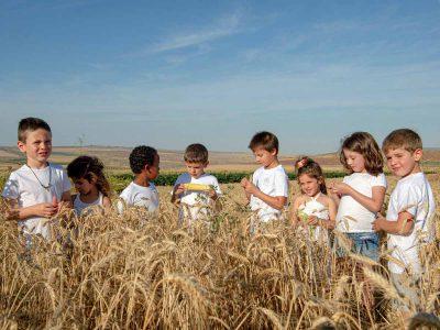 שבועות בגלבוע: ילדי קיבוץ בית השיטה, יצאו לשדות לחגוג את החג