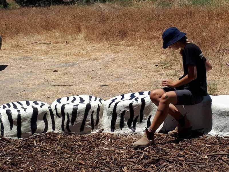 חדש על שביל עמק המעיינות: כיתת טבע ללמידה בשטח
