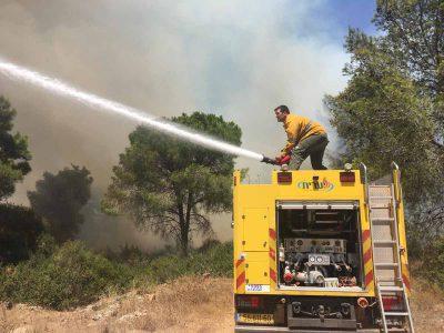 """""""הנזק עצום. כואב הלב"""": 500 דונם נשרפו ביער תבור"""