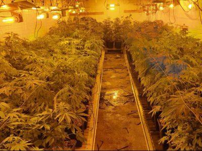 מגן שאול: מעבדת ענק להפקת סמים נחשפה במושב