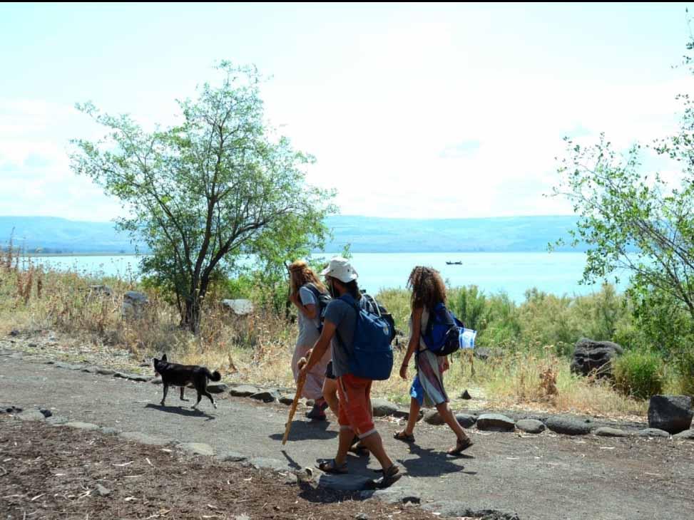 מטיילים בשביל סובב כינרת-גשר אריק לכפר לנחום 1