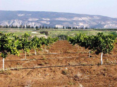 עמק המעיינות: צדק היסטורי – הסכם קרקעות נחתם בין יישובי העמק