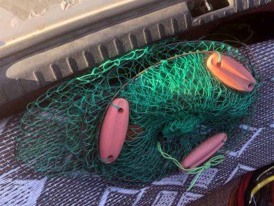 סמוך לנהלל: שוטרי משמר הגבול עצרו חשודים בניסיון גניבת דגים