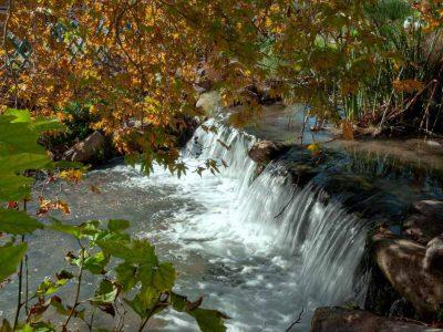 היכן בשבת: טיול אביבי אל זרימות המים, מטעי הפרי בפריחתם ותצפית ללבנון