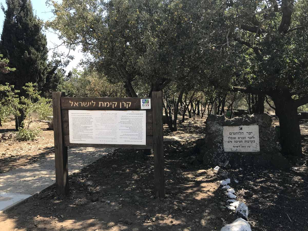 חניון הלוחמים - יער שיפון ברמת הגול