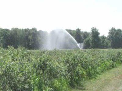 בשורה לחקלאי העמקים: אושרה תכנית שתבטיח את אספקת המים באמצעות חיבור למערכת המים הארצית
